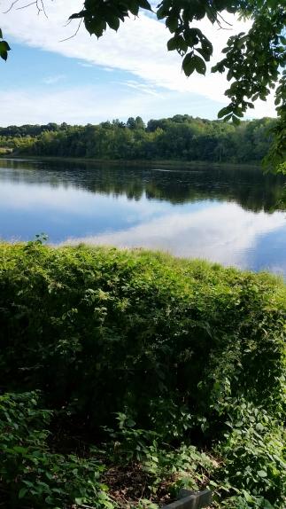 wp-image-977424441jpg.jpeg