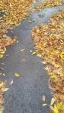 wp-image-340815808jpg.jpeg