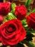 wp-image-291133752jpg.jpeg